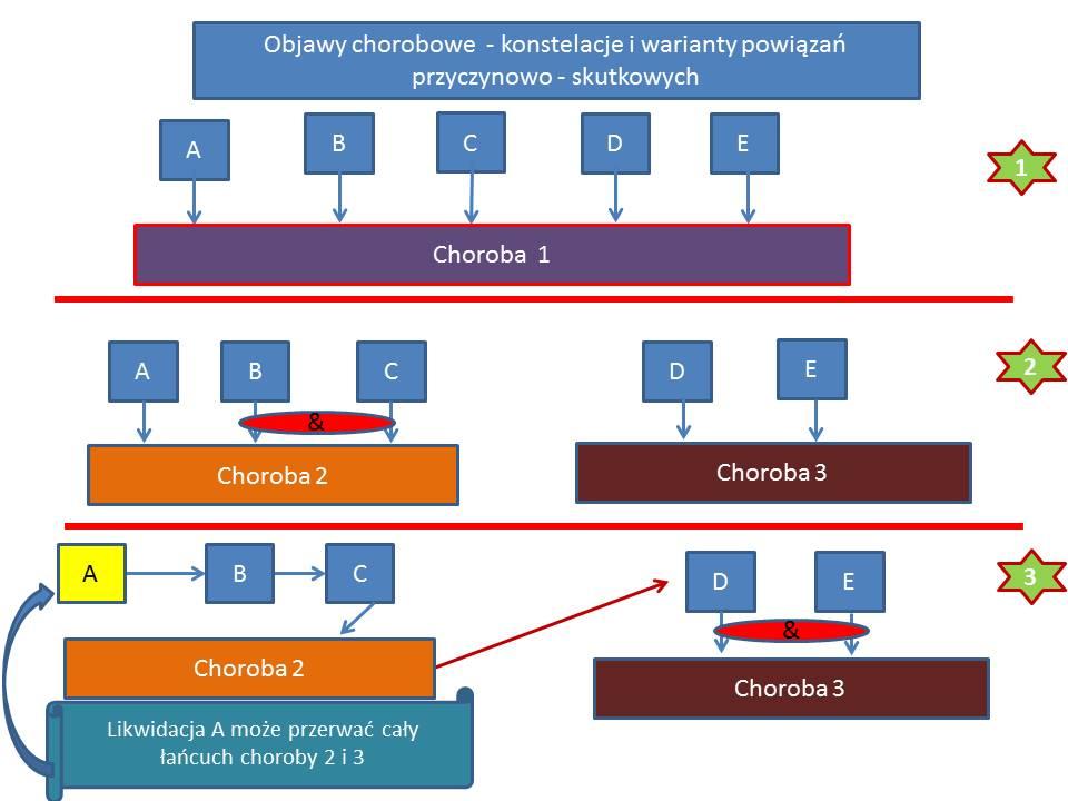 Objawy - konstelacje i powiązania