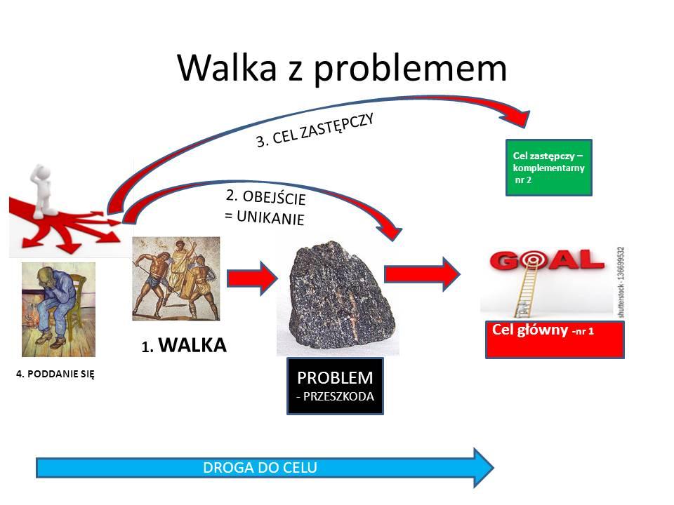 walka z problemem